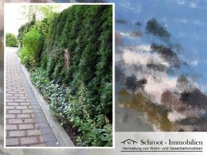 Innenhof Begrünung - Wohnungen in der Bernhardystraße 28, südliche Innenstadt von Halle (Saale)